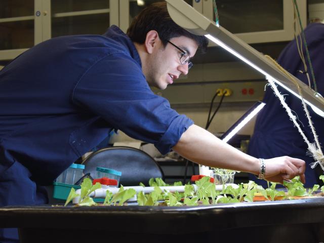 Estudiante trabajando en el proyecto de prado de agricultura inteligente | Uniandes